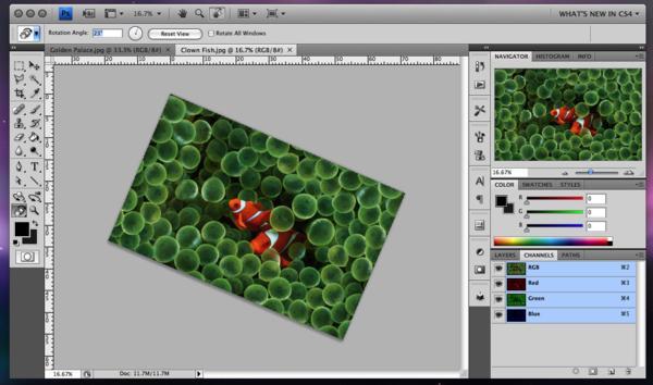 7 Free Alternatives to Photoshop for Web Designers