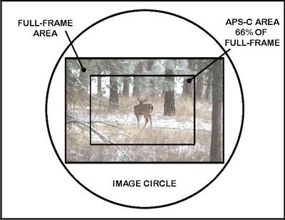 Camera Sensors APS-C