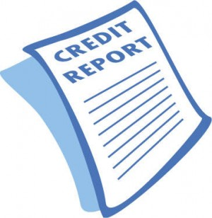 Private Credit Report For Free