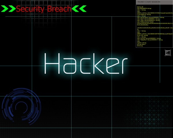Eight Hacking Trends in 2011