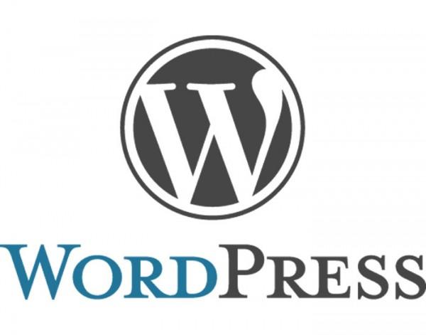 Installing WordPress Business Themes