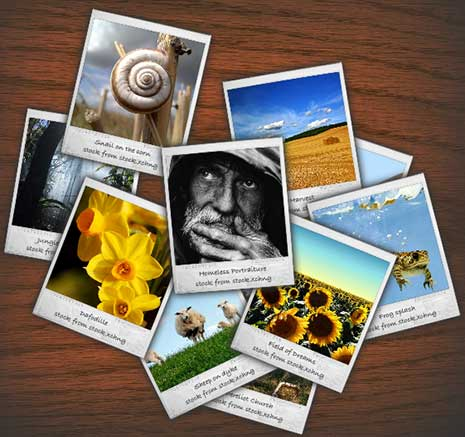 4 Steps to Let Your Photos Speak for Your Website
