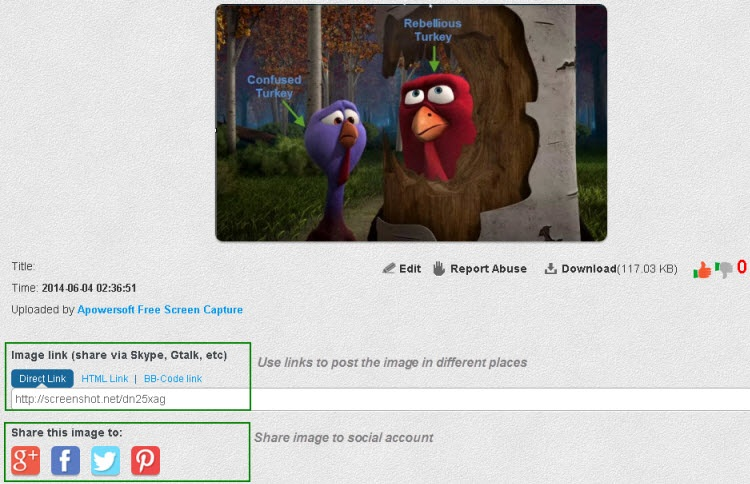 How To Capture Screen Via Free Online Screenshot