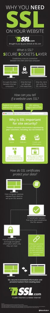 Protect Your Data And Business With SSL