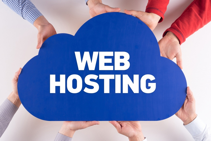 A Newbie's Guide To Web Hosting